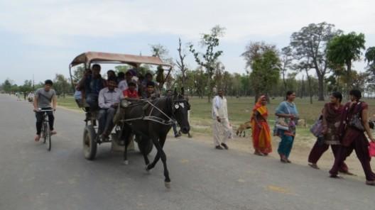 in der Grenzgegend kommen uns viele Nepalesen zu Fuss oder per Pferdekutsche entgegen