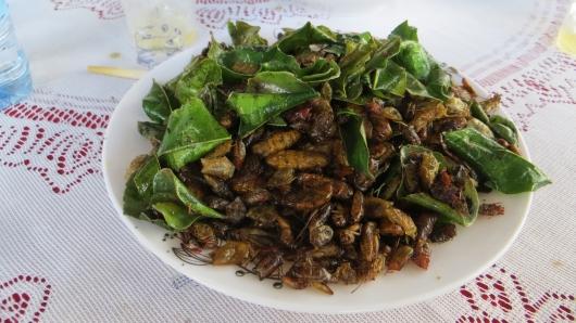 Eine laotische Delikatesse - gebratene Käfer, Larven und Heuschrecken