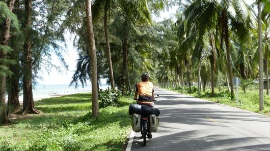 und unter Palmen, aber immer Blick nach oben, nicht dass man hier als Radfahrer von einer Kokosnuss erschlagen wird