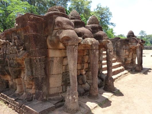 Elefantenterasse