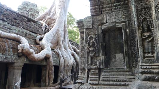 im Tempel Ta Prohm