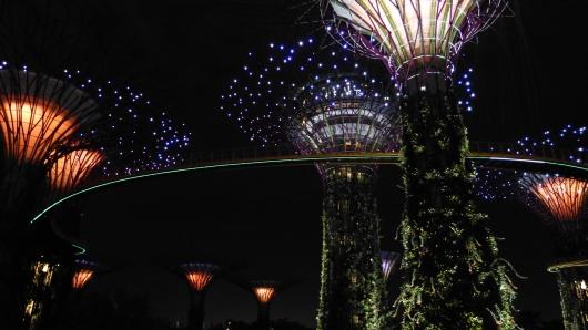 Singapur - Gardens by the Bay bei Nacht