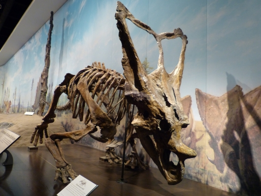 im Royal Tyrrell Museum in Drumheller